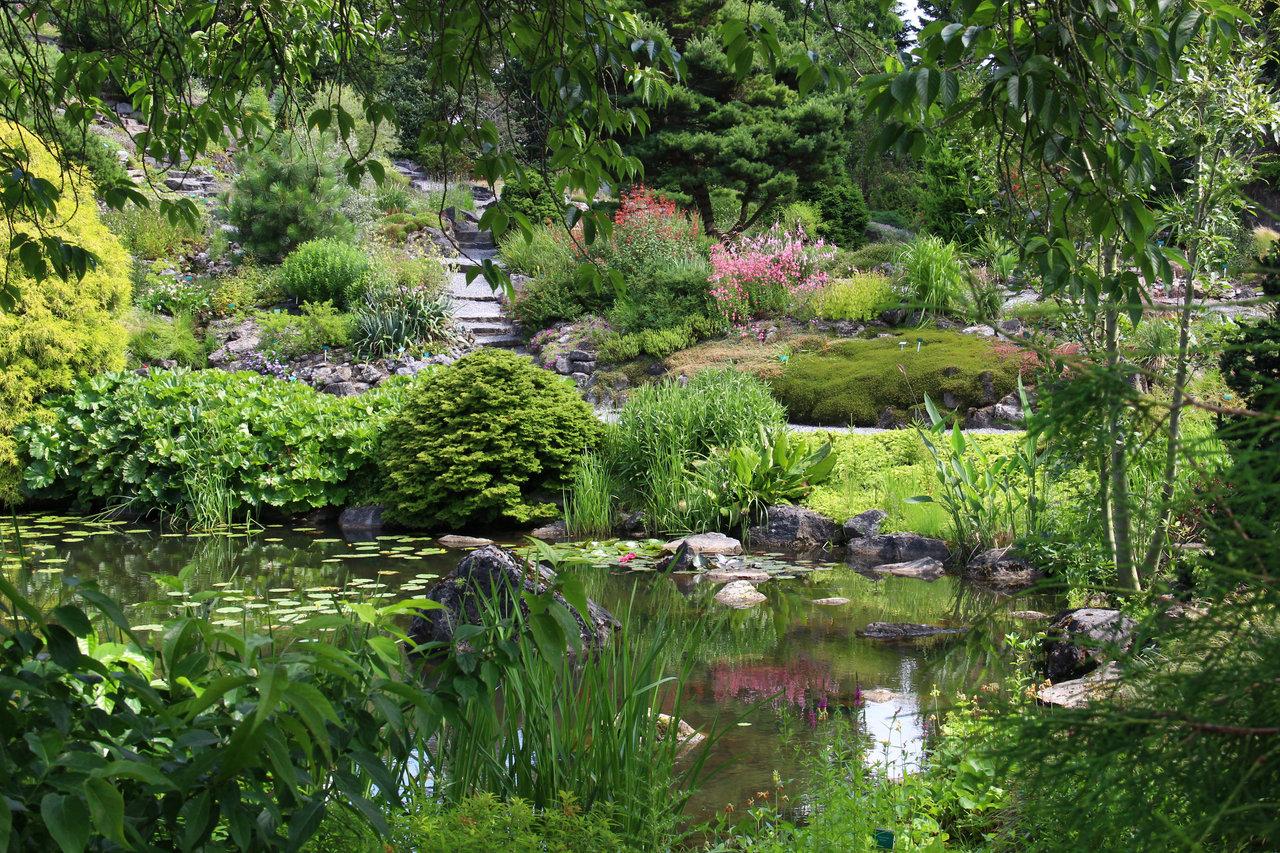 Rotstuin Botanische Tuinen Utrecht