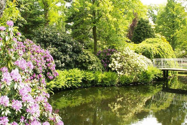 De lommerrijke Trompenburg tuinen