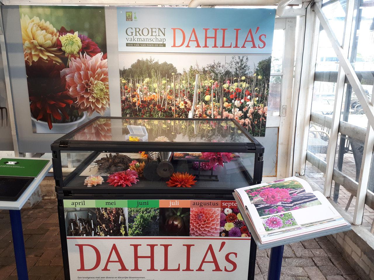 Dahlia's Historische Tuin Aalsmeer